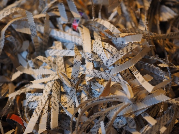 shredder-779861_1280