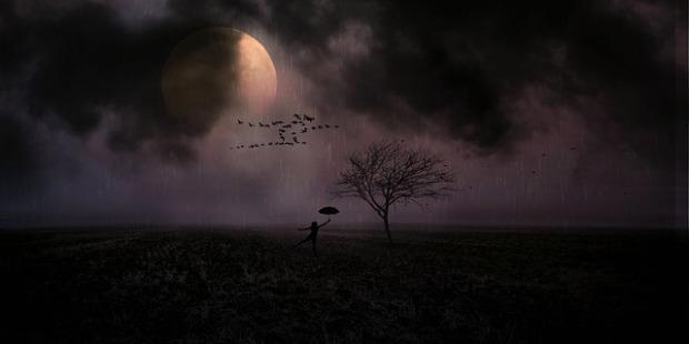 moonlight-3061068_640